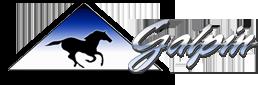 Galpin Legacy logo