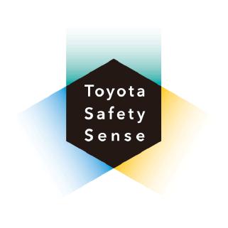 TSS-Logo